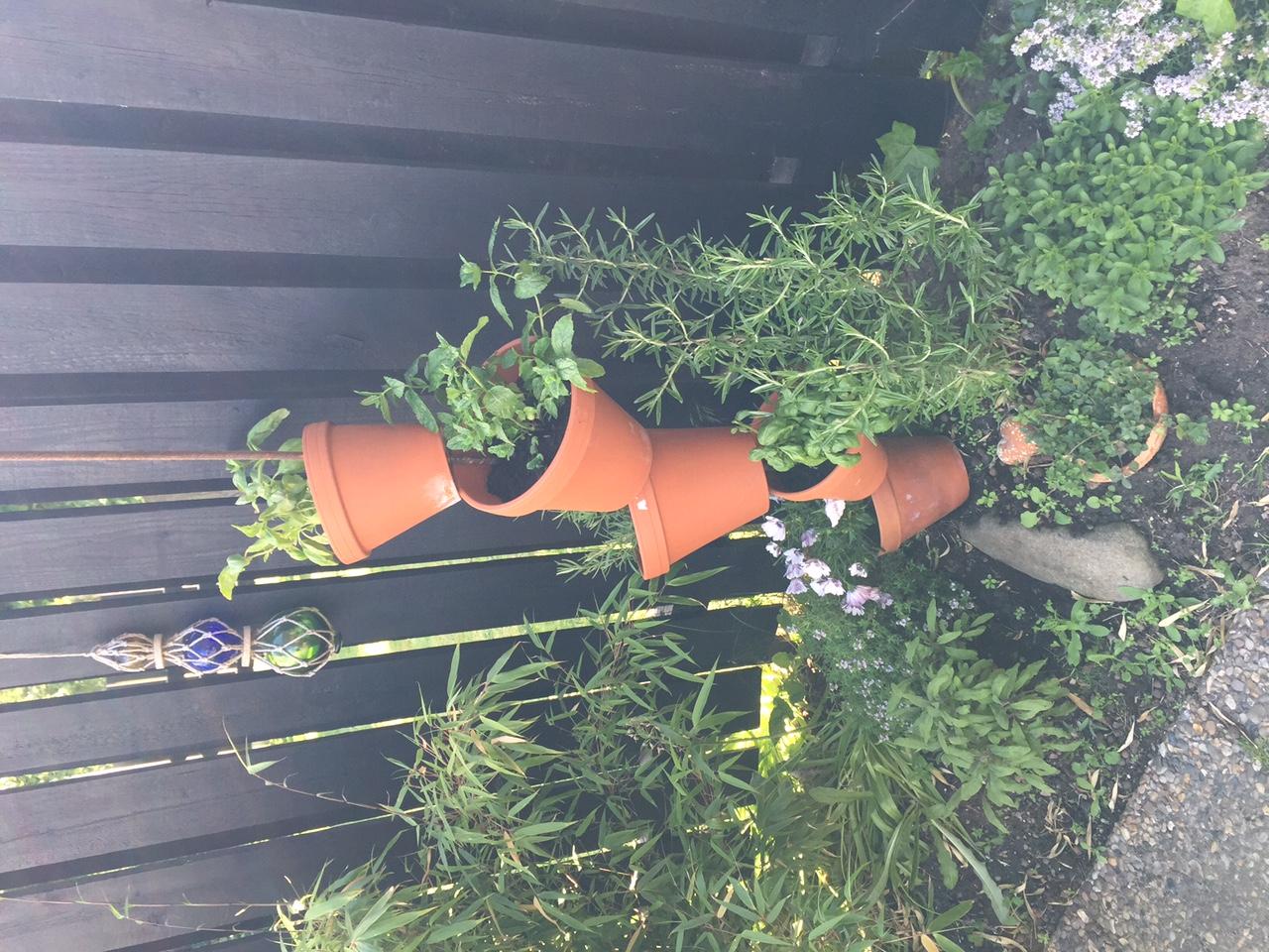 plantera i zinkbalja